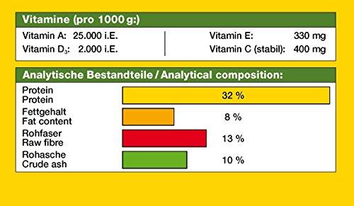 JBL NovoPleco XL 30342 Alleinfutter für große Saugwelse, Tabletten 1 l