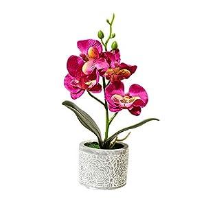 pushfocourag Plantas Artificiales 1Pc Flor Artificial Mariposa Orquídea Cemento Maceta Bonsái Hogar Jardín Fiesta…