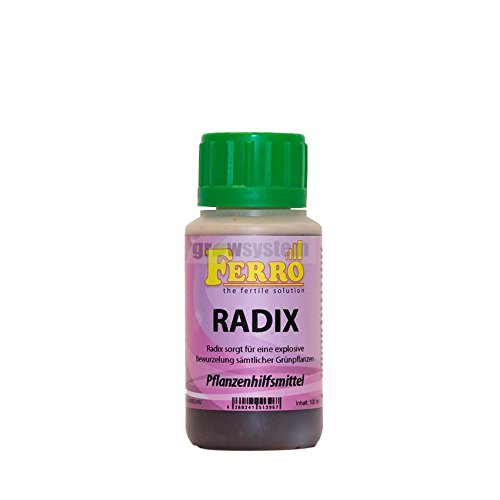'Radix