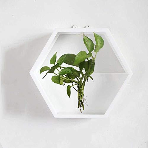 Roxnic Geometrische sechsseitige Linie Kreative Blumentopf Hydroponics Sukkulenten Pflanze Grüne Libelle Gartentopf Moderne Persönlichkeit Acrylvase Wanddekoration Wandhalterung Keine Spur Laden -