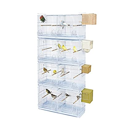 Kookaburra Cages Walnut - X4 Double Wire Breeding Cage - For Cockatiel Small Parakeet Budgie Canary Finch ECT 3