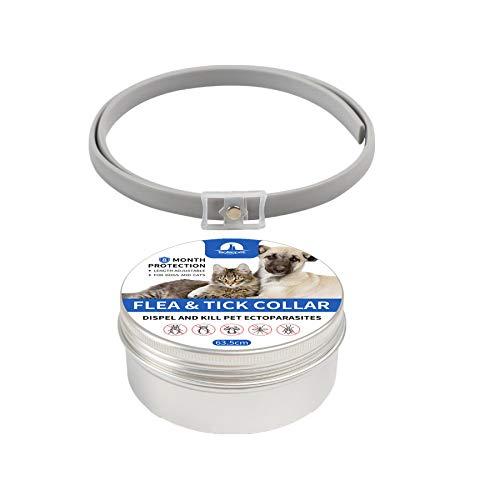 Fat.chot Zecche Collare Cani Antiparassitario   Collari Antiparassitari Collare Antipulci Pulci e Zecche per Cane e Gatto Impermeabile   Formula Naturale Efficacia Protezione (Giallo M)