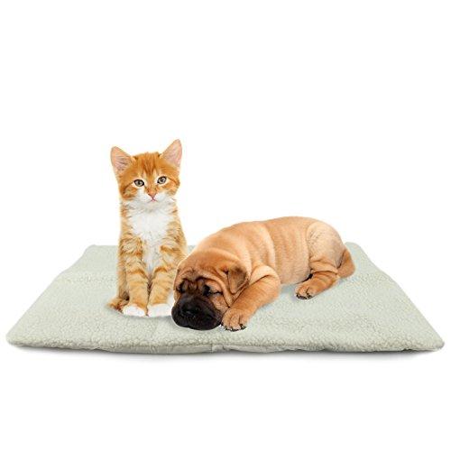 MAXCARE Asab selbst Heizung Pet Bed–Medium