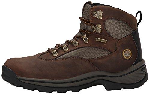 Timberland Chocorua Trail, Women's Boots 5