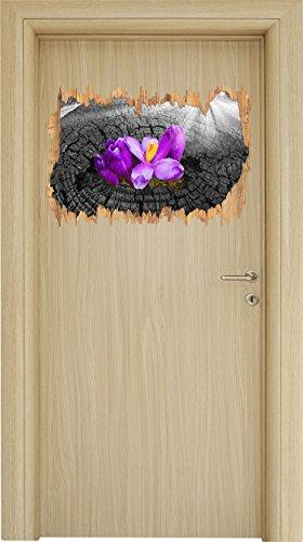 Die Kraft der Natur B&W Detail Holzdurchbruch im 3D-Look , Wand- oder Türaufkleber Format: 62x42cm, Wandsticker, Wandtattoo, Wanddekoration (Bw-tote)