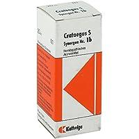 SYNERGON KOMPLEX 1 b Crataegus S Tropfen 20 ml preisvergleich bei billige-tabletten.eu