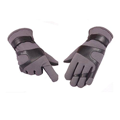 OGERT Automne Et D'hiver PU épais Gants Chauds Hommes En Cuir gray