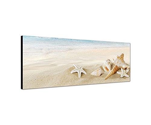 Quadro da parete su tela (tela) come panorama in 120x 40cm (spiaggia di sabbia) bianco sulla spiaggia mare con conchiglie e stelle marine e lumache. qualità di bestforhome.