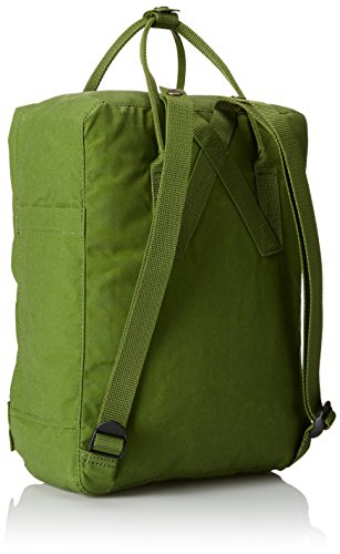 Fjällräven Kånken Polypropylene (PP),Vinylon Blue,Pink backpack - backpacks (Polypropylene (PP), Vinylon, Blue, Pink, Monotone, Unisex, Front pocket, Side pocket, Zipper) Verde Foglia
