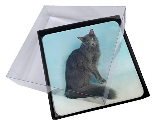 Advanta - Coaster Set 4X Silver Grey Javanese Katze Bild Setzer gesetzt -