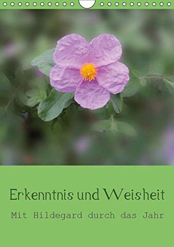 Erkenntnis und Weisheit - Hildegard von Bingen (Wandkalender 2019 DIN A4 hoch): Mit den Erkenntnissen und der Weisheit Hildegard von Bingens durch das Jahr. (Planer, 14 Seiten ) (CALVENDO Glaube)