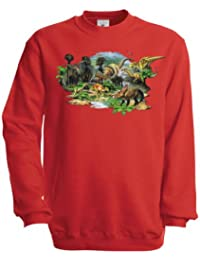 Ethno Designs Sweatshirt Enfants Dino Land