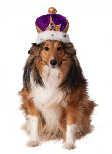 (Rubies Costume Company Mardi Gras King 's Crown für Haustiere)