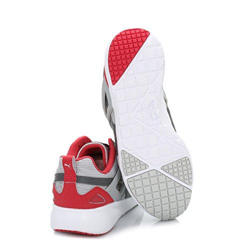 Puma Arial Basic Sports Wn's, Baskets Basses femme Gray & Violet Geranium