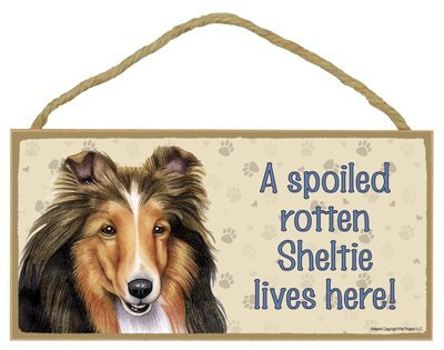 shetland-sheepdog-a-spoiled-your-favoriate-dog-breed-lives-here-door-sign-5-x-10-by-sjt