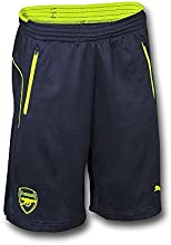 2016-2017 Arsenal Puma Training Shorts (Peacot)