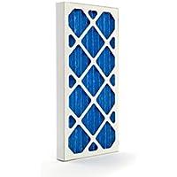 GVS Filter Technology G4P.12.24.2.SUA001.002 G4 - Filtro plisado, color azul y blanco (2 unidades)