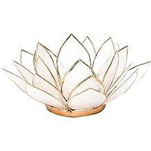 Trovare qualcosa di diverso colore naturale Capiz Shell Lotus-Porta candele da tè, in bambù, multicolore