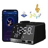 HQQNUO Despertador Radio Altavoces Bluetooth FM Reloj Alarma Digital con Alarma Doble 2 Puertos USB Tarjeta TF Función Snooze Termómetro