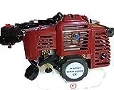 F.T. Mototrivella con Motore 72cc 4,8 HP Professionale
