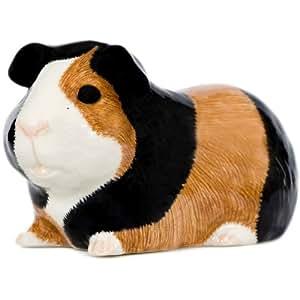 Caille céramique-Tirelire-Cochon d'Inde Multicolore