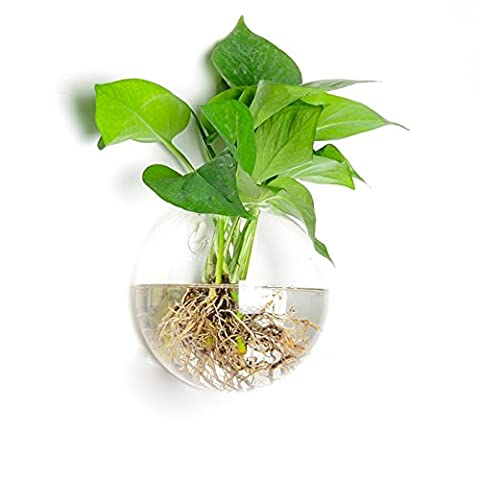 SHINA Creative Transparent Half-round Wall Mounted Glass Plant Terrariums Semicircle