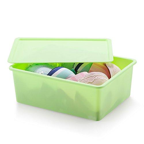 all-plastic-underwear-admit-box-i