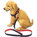 HONGLI Hundehalsband Kragen Golden Retriever Medium Kleine Welpen Hyäne Seil Welpen Kette Haustier Liefert (Farbe : Red, größe : XS)