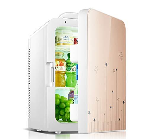 20L Autokühler Wärmer Tragbare Mini Kühlschrank 12 V DC 220 V Office Home Lebensmittel Heizung Getränkekühler Kühlschrank Reise, Picknick, Camping, Haus Und Büro,Gold (Camping-lebensmittel-heizung)
