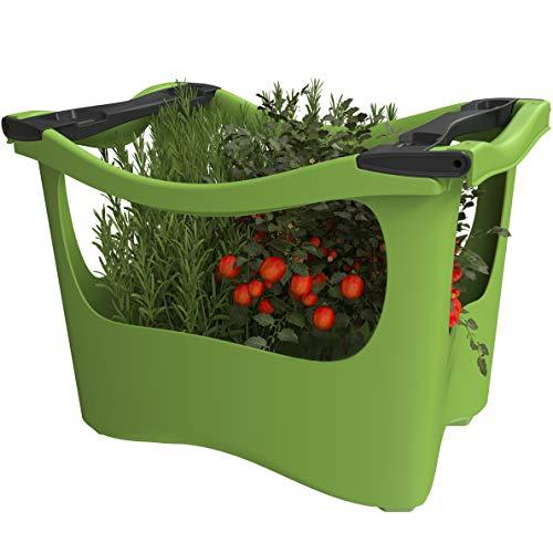 U-greeny Pflanzbox  Balkon-Hochbeet zum Stapeln, TÜV Siegel, patentiertes Wasserablaufsystem, wetterfest, 55 x 40 x 40 cm, Grün