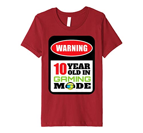 Youth Gift For 10 Year Old Gamer Or 10th Birthday T Shirt