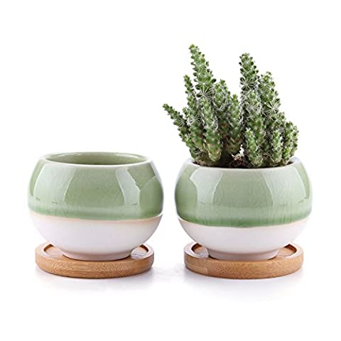 Rachel's 7.5CM Ball Shape Sucuulent Cactus Plant Pots Flower Pots Planters Containers Window Boxes With Bamboo Tray Green Set of