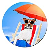 Dog Sunbathing On Deck Chair Design Round Non-Slip Rubber Mouse Pad