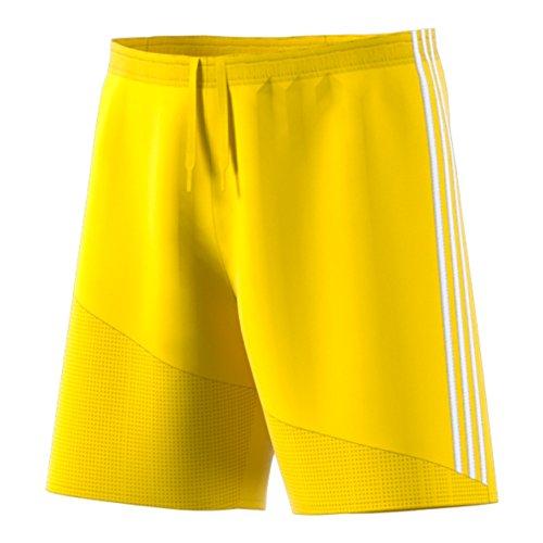 adidas Herren Climacool Regista 16kurz, Herren, gelb - Adidas Kordelzug Shorts