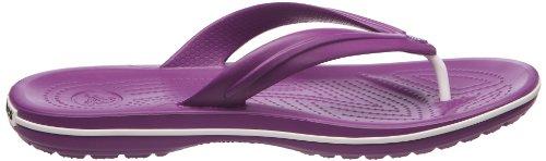 crocs Crocband flip 11033-394-010 Herren Zehentrenner Violett (Dahlia)