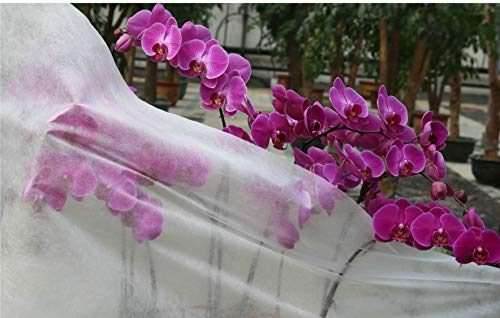 Grande housse pour plantes de jardin en laine polaire, 30 g/m², 2 m de large, blanche 2mx20m blanc