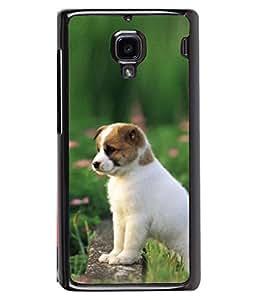 PrintVisa Pup Stairing High Gloss Designer Back Case Cover for Xiaomi Redmi 1S :: Xiaomi Hongmi 1S