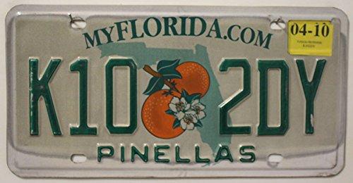 USA Nummernschild FLORIDA com °° US Kennzeichen Motiv: ORANGEN °° Blechschild Autoschild