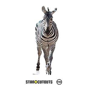 StarCutouts SC1439 - Cebra para Adultos, Color Blanco y Negro, Ideal para los Amantes de los Animales, Fiestas temáticas africanas y Eventos, Altura 162 cm