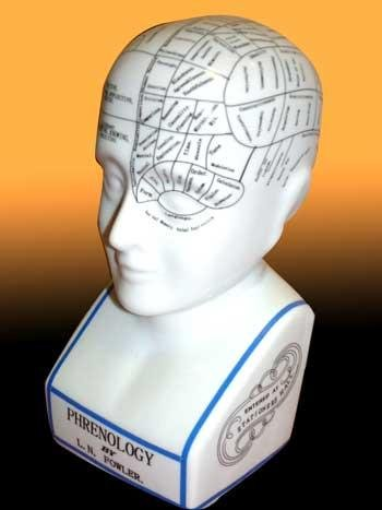 12-ceramic-phrenology-head