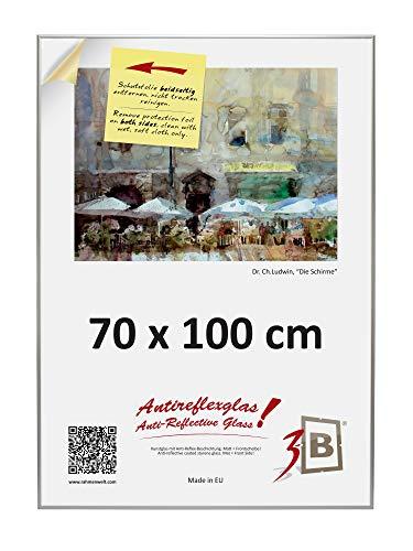 3-B Alu Poster Brushed - Großer Bilderrahmen - mit Antireflex Polyesterglas und Einzelverpackung - Silber matt - 70x100 cm (Format B1)