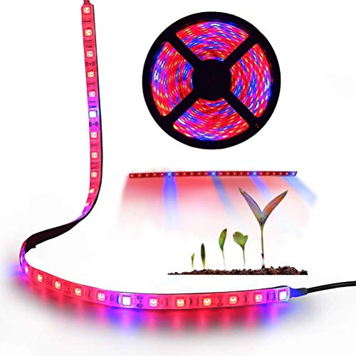 WINBST Tira luz LED Luz Planta TopLight Lámpara Cuerda