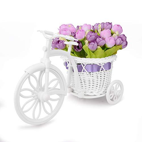 Takefuns Garden - Soporte para plantas, diseño de bicicleta decorativa ideal para decoración de hogar...