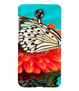 FurnishFantasy Designer Back Case Cover for Micromax Canvas Xpress 2 E313