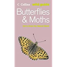 Butterflies and Moths (Collins Wild Guide)