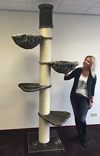 RHRQuality Kratzbaum große katze XXL Maine Coon Tower Grau Taupe Deckenhöhe 245-265cm mit 20cmØ Stämme stabil. Katzenkratzbaum speziell für schwere Katzen. Deckenhoch -