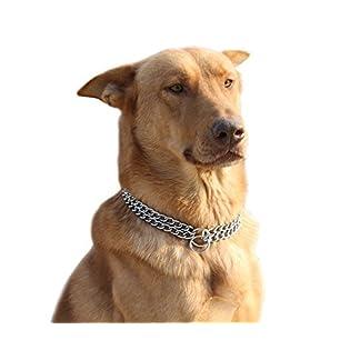Moonpet Stainless Steel P Choke Metal Chain – Training Dog Pet Collars – 2 Row Chrome Adjustable Collar 41YHOGqOqLL