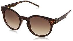 Polaroid Polarized Phantos Unisex Sunglasses - (PLD 2036/S 086 5094|50|Brown Color)