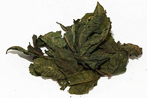 Kastanien Laubblätter (grün getrocknet), 20 Blätter - Garnelen- Wasserschnecken und Krebsfutter (Kastanien-blatt)