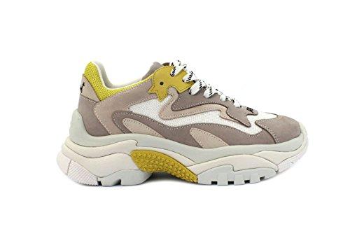 ASH Sneaker Addict Taglia 39 - Colore Beige